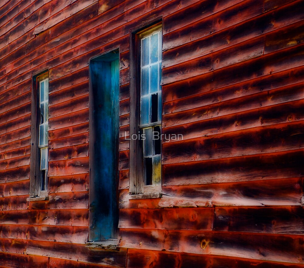 Windows to The Past by Lois  Bryan
