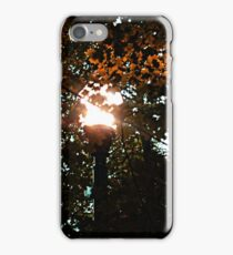 Finding the Street Lamp Among the Leaves iPhone Case/Skin