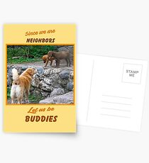 Since We are Neighbors Postcards