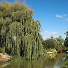 Oxford Canal Cropredy Village by SimplyScene