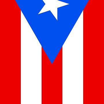Puerto Rico Flag Vertical by KZiegman