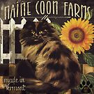 Maine Coon Farms Vermont by mindydidit