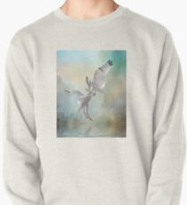 Duelling White Ibises Pullover