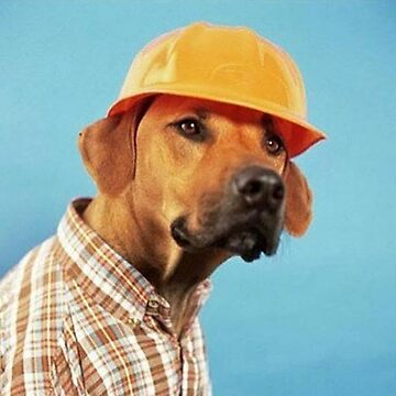 Safety Doggo by Ruzakai
