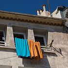 Washing in Sete. by Anne Scantlebury