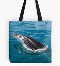 Humpback whale calf, Moreton Bay Tote Bag