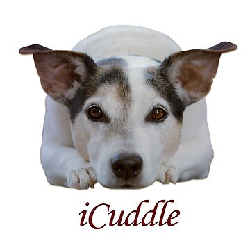 Jack Russell iCuddle by Shana1065