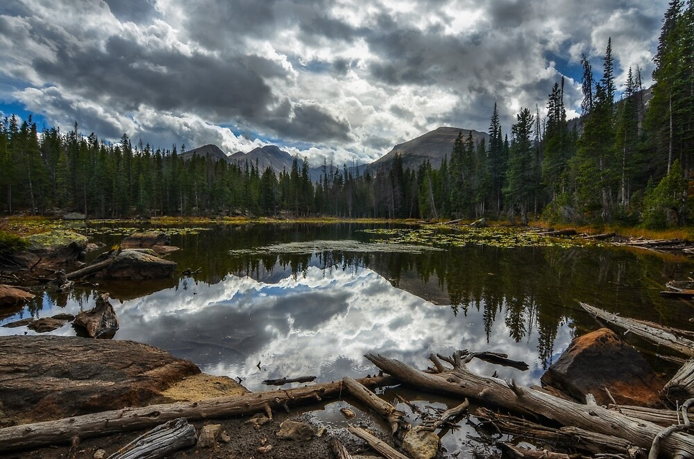 Nymph Lake, Colorado. by mattmacpherson