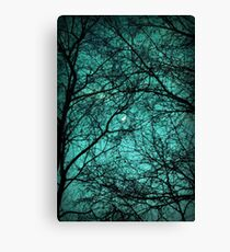 Beautiful Darkness - Half-Moon in the Trees Canvas Print