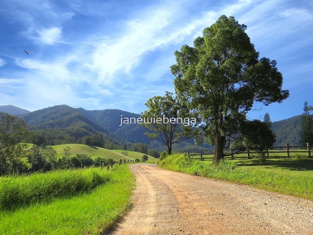 Promised Land by janewiebenga