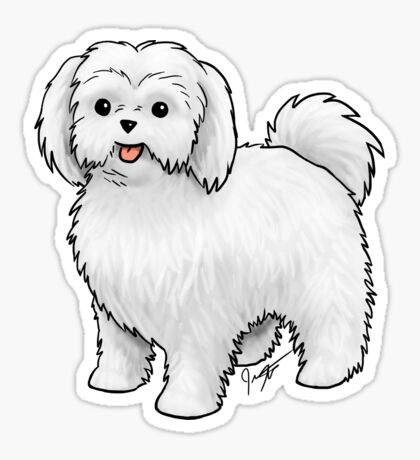Maltese - Puppy Cut Glossy Sticker