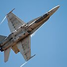 The Royal Canadian Air Force's CF-18 Fighter Jet by Rick Nicholas