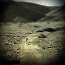 Runaway by Hollie Cook