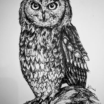 A sketch of a stern owl by KAStrumila