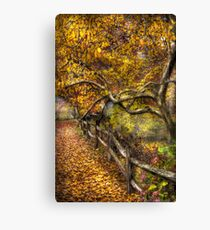 Country Road side Canvas Print