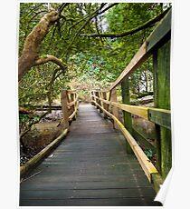 Blarney Boardwalk Poster