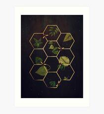 Bienen im Weltraum Kunstdruck
