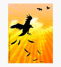 ...Sunshine... Photographic Print