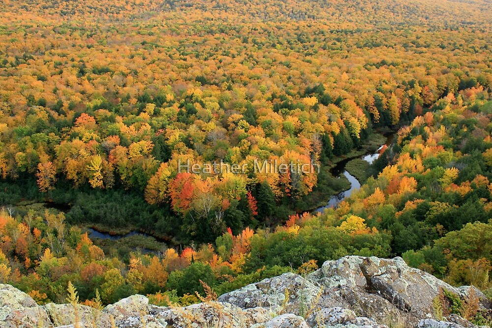 Autumn Ablaze in the Carp River Valley by Heather Newkirk