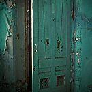 Aqua Door by PolarityPhoto