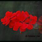 My Redeemer Lives by Lozzar Flowers & Art