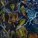 Witch's Spell by Jedro