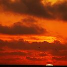 Sunset on a SoCal Beach by Clayton Bruster