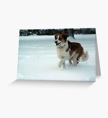 Snow Races Greeting Card