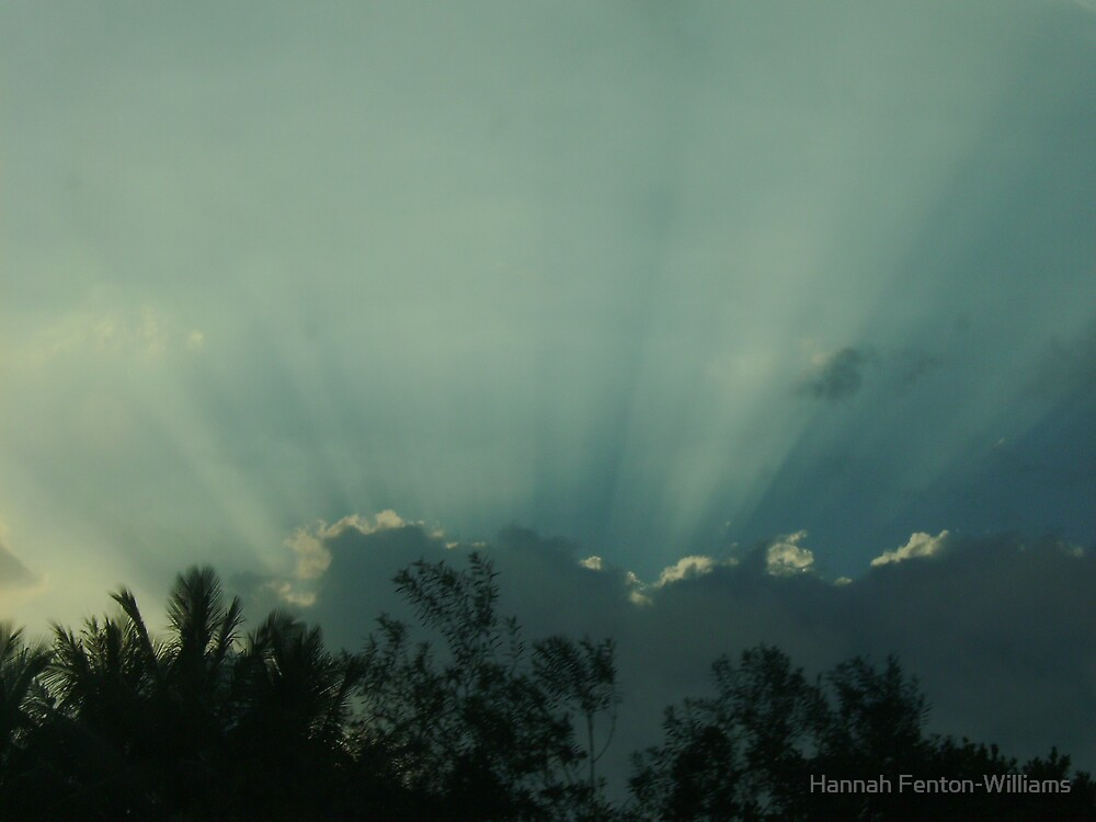 Rays of hope by Hannah Fenton williams