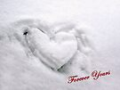 Warm Heart in a Cold Climate by Foxfire