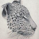 Kenya Leopard by Jedro