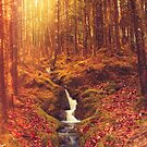 Autumn waterfall fantasy by Angi Wallace