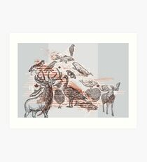 Animalia Canadiana Art Print