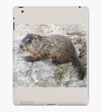 Groundhog Youth iPad Case/Skin