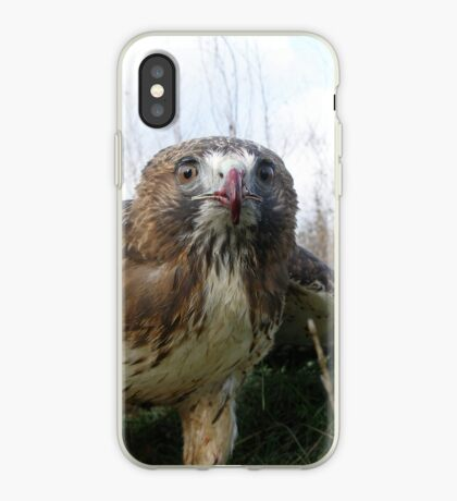 Griffon 5 iPhone Case