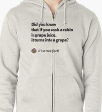 It's a rock fact! #1 Zipped Hoodie