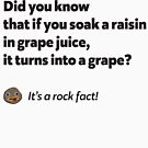 It's a rock fact! #1 by Expandable Studios