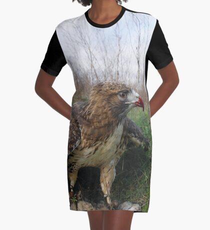 Griffon 16 Graphic T-Shirt Dress