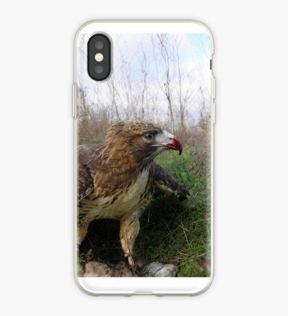 Griffon 16 iPhone Case
