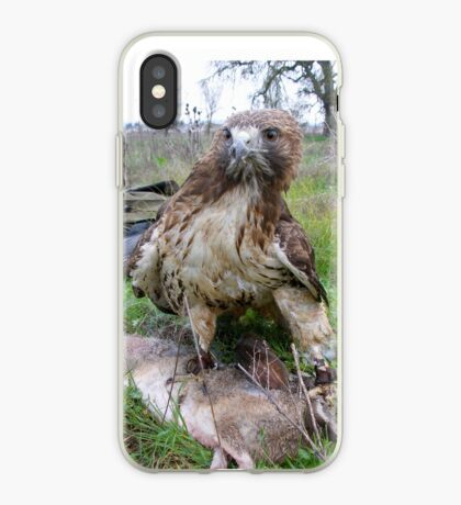 Griffon 18 iPhone Case