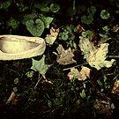 Lost Slipper by Paul Scrafton