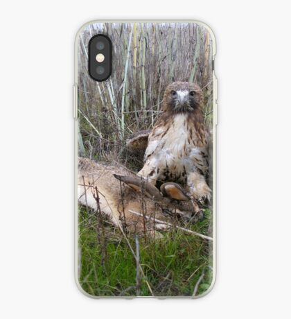 Griffon 22 iPhone Case