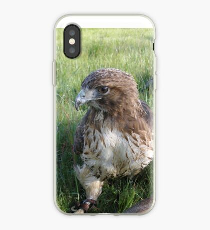 Griffon 23 iPhone Case