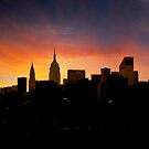 Manhattan Skyline by Alex Preiss