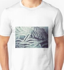 Winter frosted glass 4 T-Shirt
