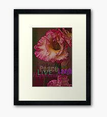 Peace, Love, Hope, Laugh, Live, Happiness Framed Print