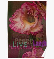 Peace, Love, Hope, Laugh, Live, Happiness Poster