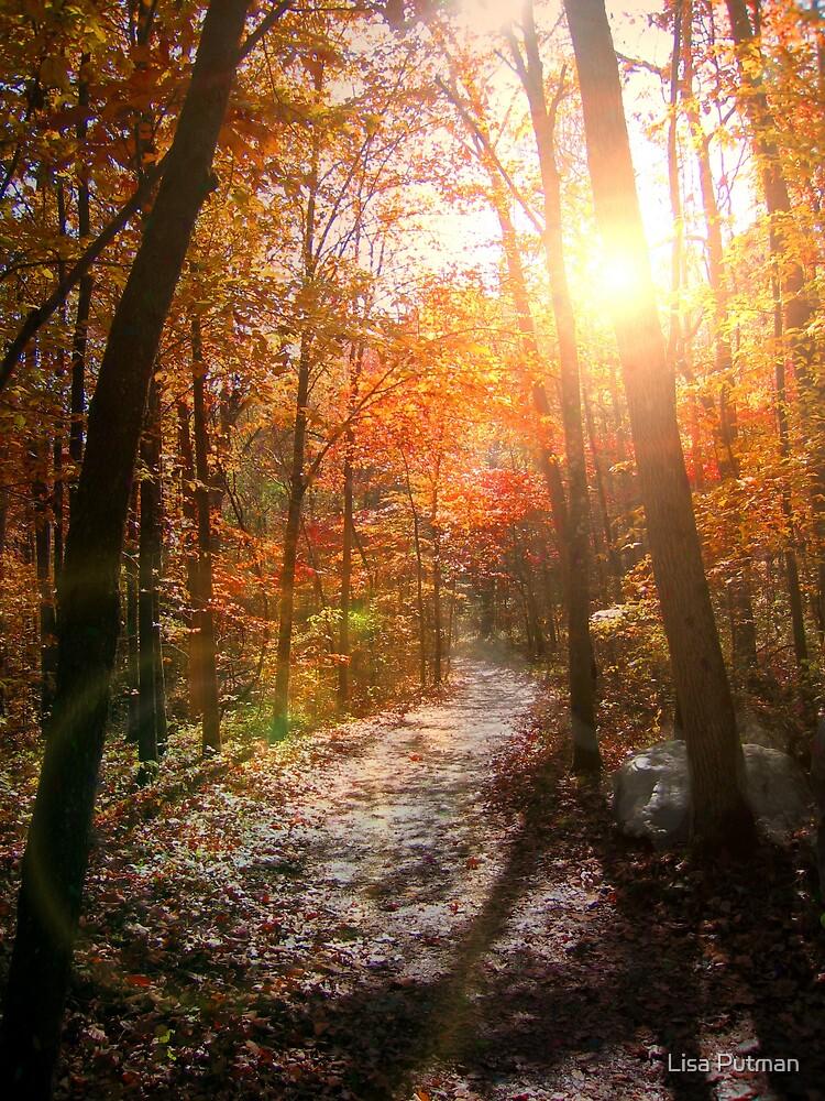 A Light To My Path by Lisa G. Putman