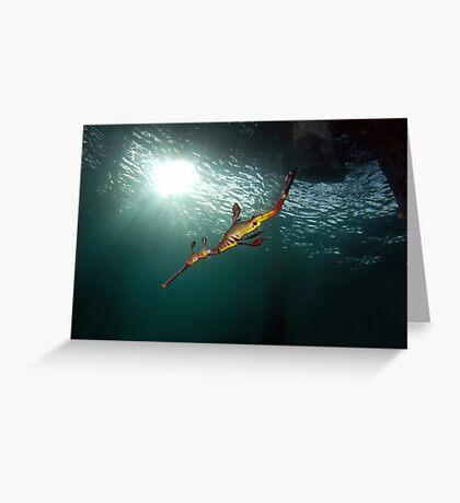 Seadragons & Sunshine Greeting Card
