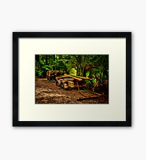 """""""One Hundred Years Down The Track"""" Framed Print"""